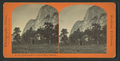Looking down the Yosemite Valley, California, by Reilly, John James, 1839-1894.png