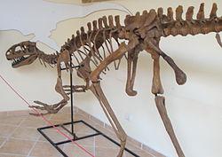 Lourinhanosaurus antunesi.jpg