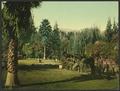 Lucky Baldwin's ranch, Pasadena-LCCN2008678183.tif