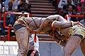 Lutte sénégalaise Bercy 2013 - Youssou Ndour-Matar Guèye - 22.jpg