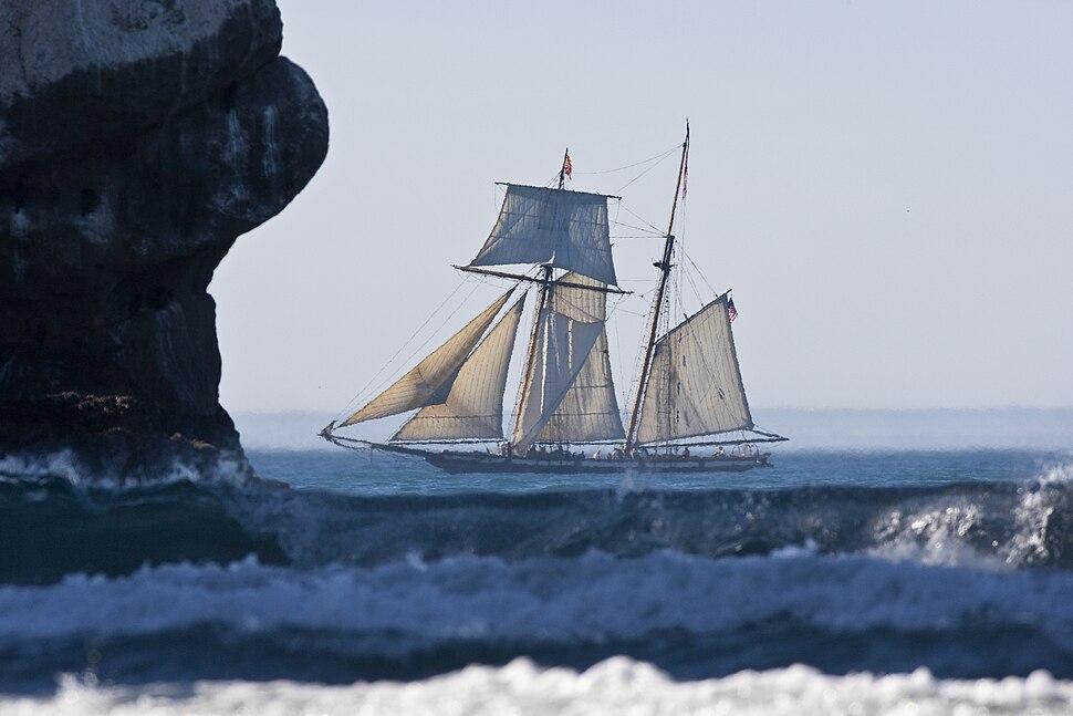 Lynx schooner in Morro Bay