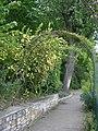 Lyon 5 - Parc des Hauteurs - Jardin du Rosaire - Rosier Rosa xanthenia.JPG