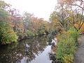 MSU 2014 River2.jpg