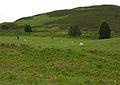 Machynlleth golf course - geograph.org.uk - 1506214.jpg