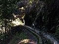 Madeira3 018.jpg