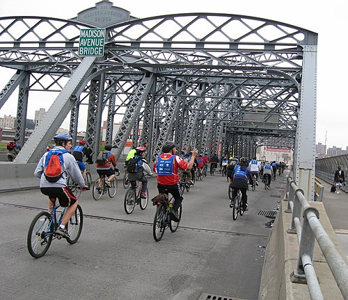 Bicyclists crossing the bridge during the Five Boro Bike Tour a5356ae90
