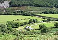 Maes-mawr from the forest path - geograph.org.uk - 533584.jpg