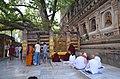 Mahabodhi Temple Complex, Bodhgaya (8716403415).jpg