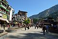 Mall Road - Manali 2014-05-10 2226.JPG