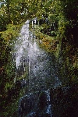 Mallyan Spout, Goathland - geograph.org.uk - 548221