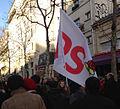 Manifestation 01-27-2013 Paris - PS drapeau.jpg