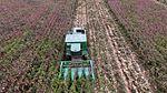 Maquinário agrícola do governo auxilia na colheita de milho em Capixaba (27123739952).jpg