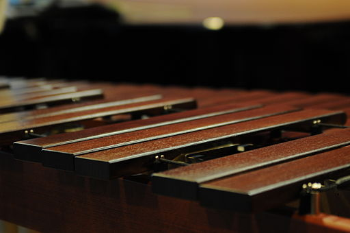 Marimba detail (2931259387)