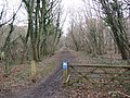 Marriott's Way - geograph.org.uk - 347200.jpg