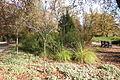 McConnell Arboretum & Botanical Gardens - Redding, California - DSC03017.JPG