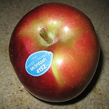 "A red and green apple with a sticker on it that reads ""McIntosh 4152"""