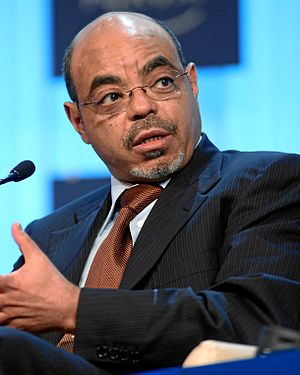 Meles Zenawi - Image: Meles Zenawi World Economic Forum Annual Meeting 2012