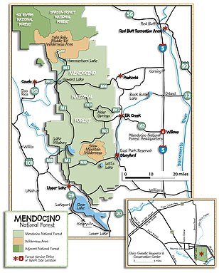 Mendocino National Forest overview map.jpg