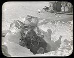 Mertz emerging from Aladdin's Cave (Australasian Antarctic Expedition, 1911-1914). (6173421529).jpg