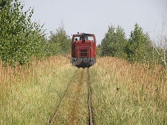 Vladimir Oblast - Gusevskoye peat narrow gauge railway, 2012