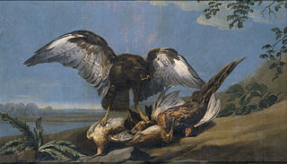 Kite with a Group of dead Birds