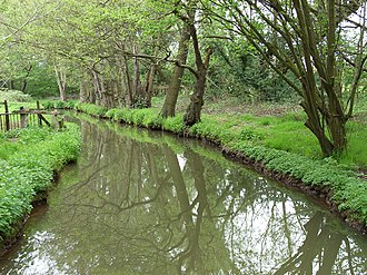 River Bourne, Addlestone - Image: Mill Bourne geograph.org.uk 166255