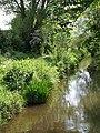 Mill Stream, Taunton - geograph.org.uk - 802109.jpg