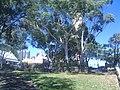 Millers Point NSW 2000, Australia - panoramio (28).jpg