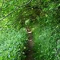 Milltown footpath. - panoramio (1).jpg