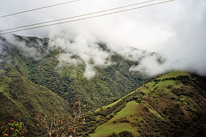 Mindo-Cloud-Forest-04.jpg