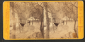Mineral Springs Hotel, from Robert N. Dennis collection of stereoscopic views.png