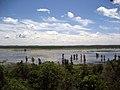 Mingo National Wildlife Refuge.jpg