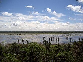 Mingo National Wildlife Refuge - Mingo National Wildlife Refuge, May 2013