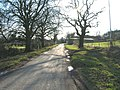 Minor Road, Gonalston - geograph.org.uk - 1758489.jpg