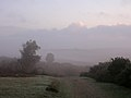 Misty view from Godshill Ridge to Deadman Hill, New Forest - geograph.org.uk - 66971.jpg