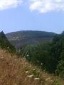 Montezinho 3.jpg