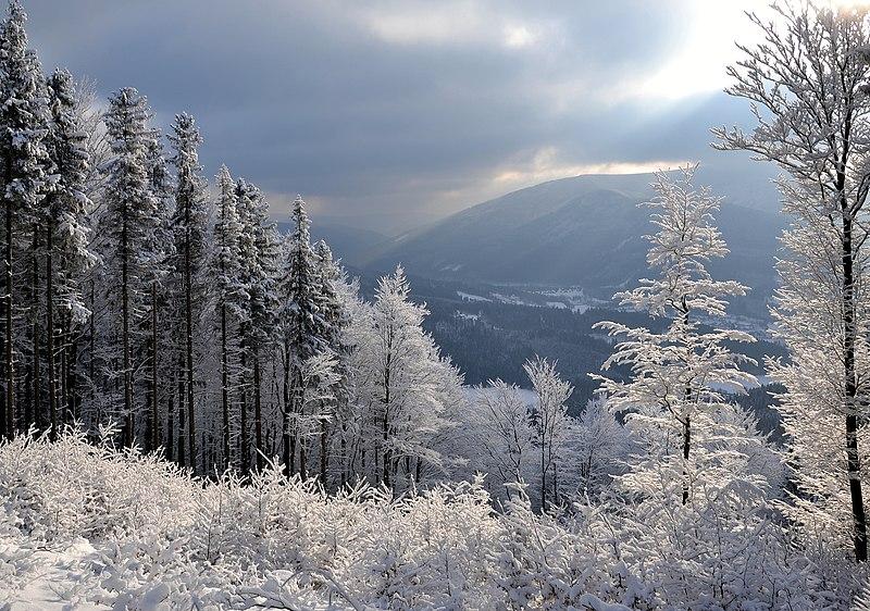 File:Moravskoslezské Beskydy - zima 2014 (by Pudelek) 05.JPG
