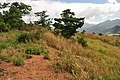 Morong, 2108 Bataan, Philippines - panoramio (28).jpg