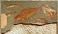 Mosaic dels peixos.JPG
