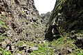 Mount Ara 4.jpg
