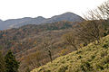 Mt.Hirugatake 18.jpg