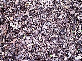 Mulch, wood01.jpg