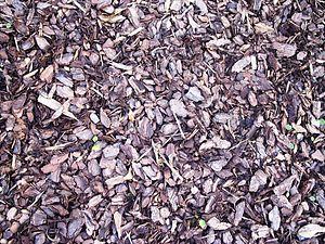 Mulch, wood01