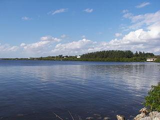 Myakka River River in Florida, United States