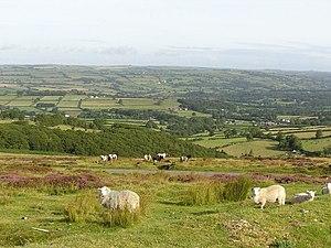 Llanllwni - Image: Mynydd Llanllwni geograph.org.uk 388950