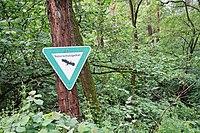 NSG Im Woog von Hainstadt 01.jpg