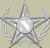 Wikipedians of Navarre Creation Award (Silver Class)