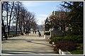 Nenad Sakovic Kex Valjevo Serbia - panoramio - Nenad Sakovic.jpg