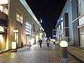 Night MOG in Tsukuba.jpg