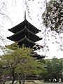 Ninna-ji National Treasure World heritage Kyoto 国宝・世界遺産 仁和寺 京都51.JPG